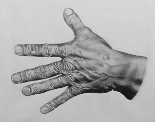 Old Hand by Palmer0047