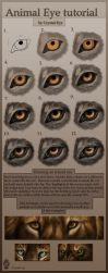Animal Eye tutorial by Crystal-Eye