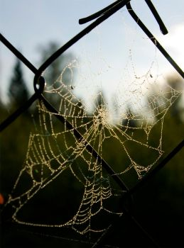 Web by channet