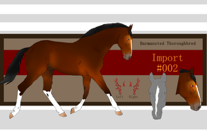 HTB stallion Import #002 by NorthernMyth
