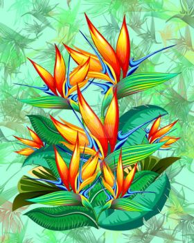 Bird of Paradise Flower Exotic Nature by Bluedarkat