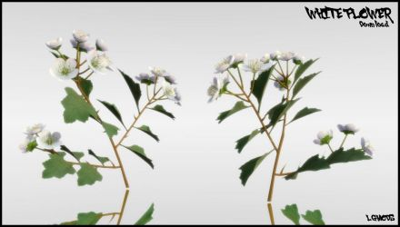[MMD DL] WHITE FLOWER (Download) by LGMODS
