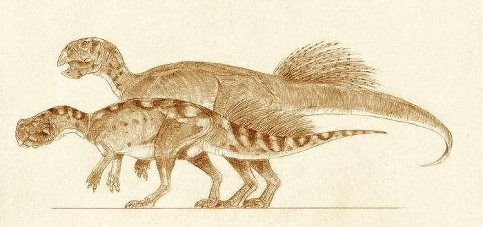 Psittacosaurus lujiatensis by Kahless28