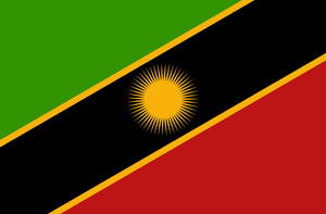 Flag of the African Federation by RvBOMally