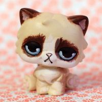Grumpy Cat inspired LPS custom by pia-chu