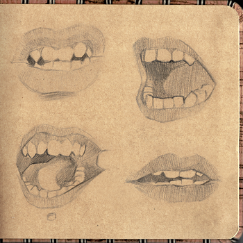 Digital Sketchbook Study 02 Mouth Preview 1 by GoldenTar