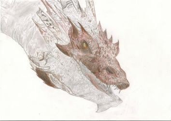 Smaug - WIP by NickTheDragonTrainer