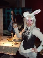 Alice in Wonderland Rabbit by lilam70