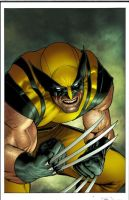 Wolvie by JUANCAQUE