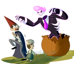 Over the garden wall and Mystery Skulls by Snowflake-owl