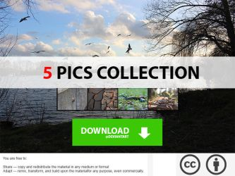 5 Pics Collection 3 by Firem4n