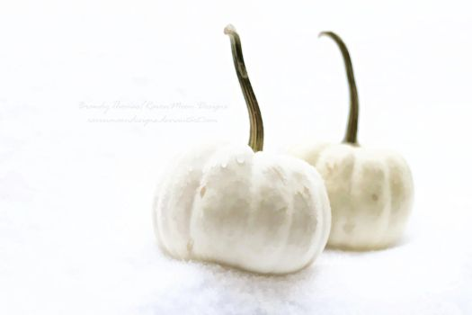 The Pale Pumpkins by RavenMoonDesigns
