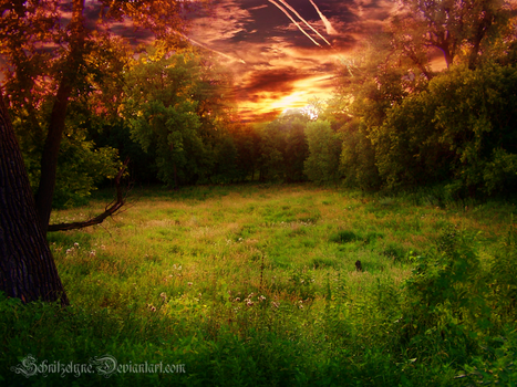 Meadow of Heaven by ElyneNoir