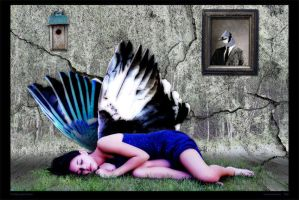 The Blue Jay's Dream -edited by LeeAnneKortus