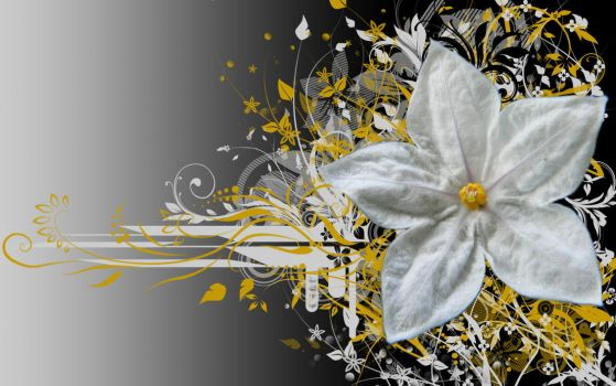 White Flower by BlackWitch185