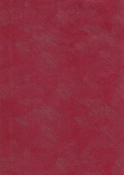 Red Painted Plastic Paper1 by powerpuffjazz