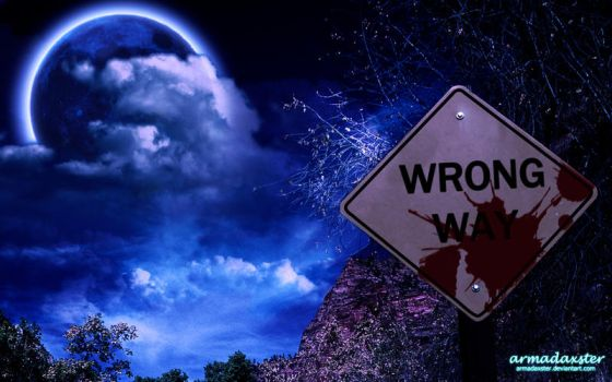 Wrong Way by Armadaxster