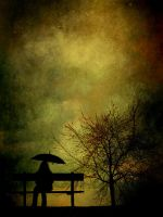 Enchanted.. by hearthy