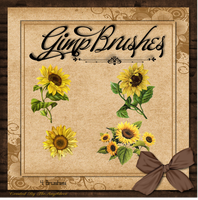 GIMP Brushes | Sunflower Brushes by TheAngeldove