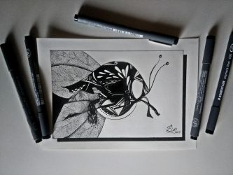 Mosquito by StephanoAnt