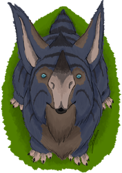 Curious Kubrow by Gochna