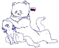 lol Cat Russia and Latvia by nightwindwolf95