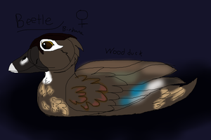 Birbsona by Its-Mousepelt
