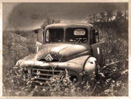Old Citroen Type 55 Truck by 3ftDeep