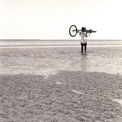 bike to sea by grevys