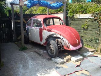 my bug project by sblight