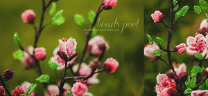 Peach flowers by beads-poet