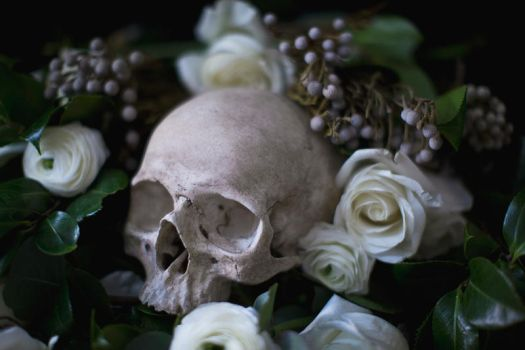 Death and roses by Pureblackmagik