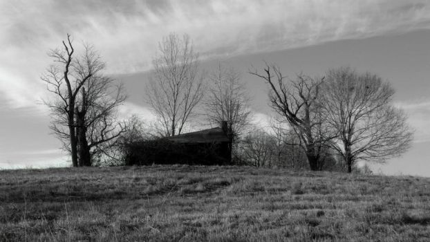Haunting of Hill House (Black and White, Digital) by cjmartin87