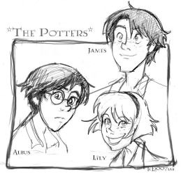 Potters- DH - HP by lberghol