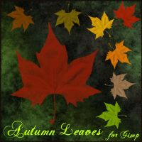 Autumn leaves brushes for Gimp by Lucida