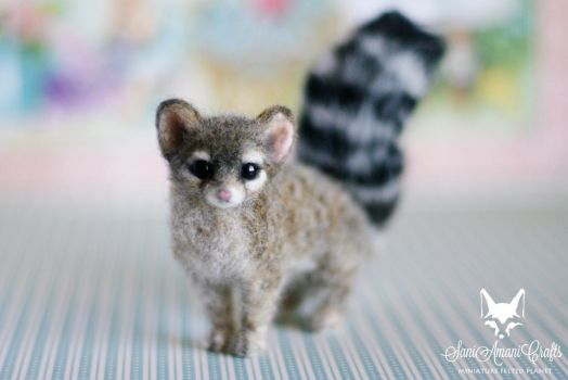 Cacomistle / Ring-tailed cat by SaniAmaniCrafts