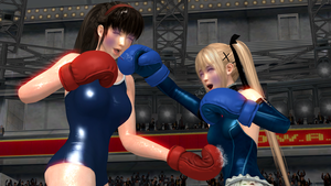 Request:Hitomi Vs. Marie Rose Boxing by Speedhedgehog32