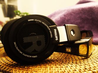 My Second Best pair of Headphones. by Wretched--Stare
