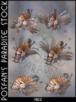 Animals 079 LionFish by poserfan-stock