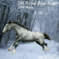 Royal Blue by Carillie