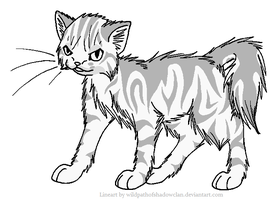Evil Longhaired Tabby Lineart by WildpathOfShadowClan