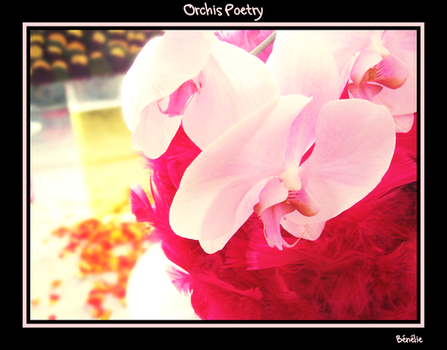 Orchids Poetry by benelie