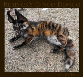 Riddick's Dingo Dongo by Zhon