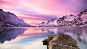 The Pink Hour by jViks
