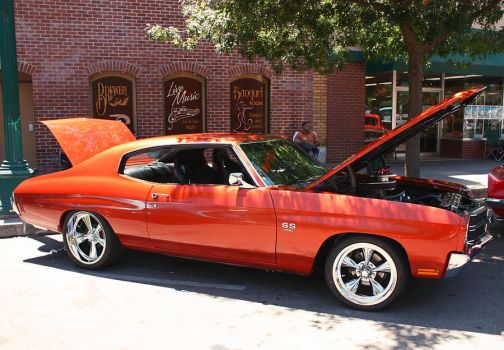 Nice Chevelle by StallionDesigns