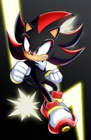Shadow the Hedgehog by AlcyoneAX
