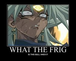 WHAT THE FRIG by naga07