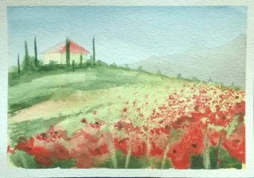 Poppies field 20170726 by NataBold