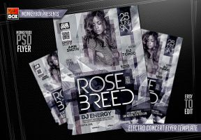 Electro Concert Flyer Template by AndyDreamm