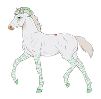N3218 Padro Foal Design by casinuba